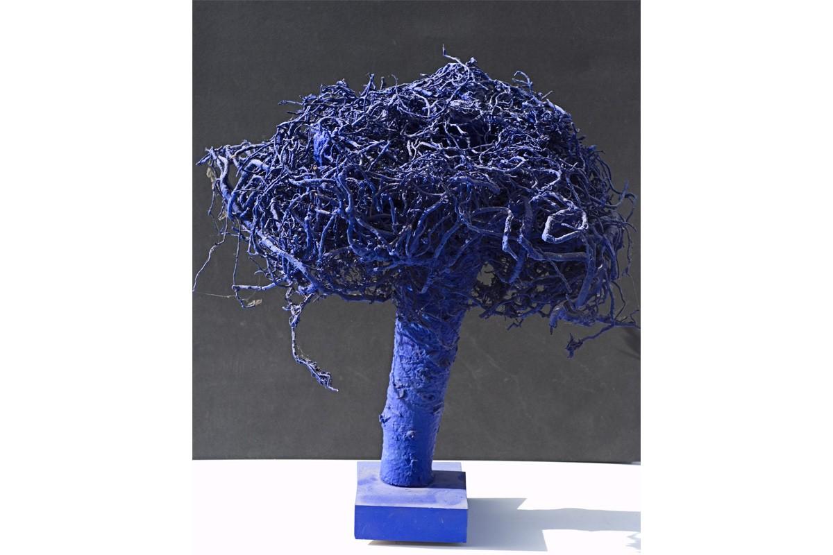 albero-oltremare